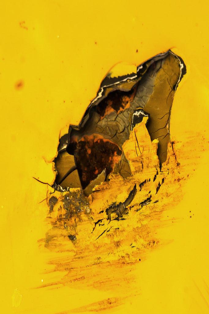 Movements (MO08) - Heleen van Tilburg